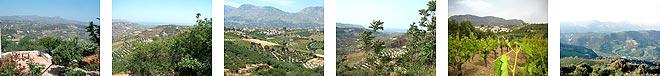 petrokefalo-views-one